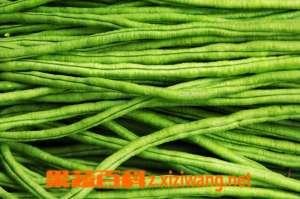 豇豆的食疗作用和营养分析 豇豆食疗价值